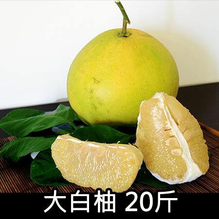 〔玉峰〕大白柚/20斤/約8顆