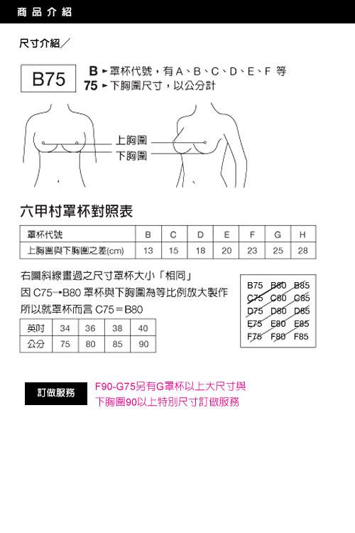 六甲村 全罩式哺乳胸罩 75E~90E  粉紅【德芳保健藥妝】 3