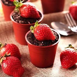 ★木匠手作★草莓盆栽提拉米蘇(一盒10入) 2