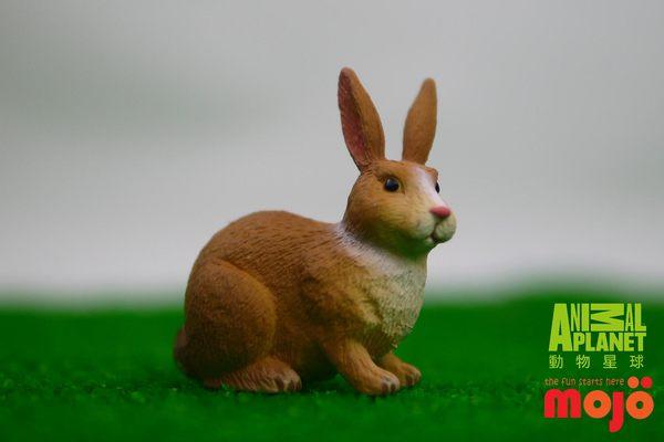 ~MOJO FUN 動物模型~白褐色小兔
