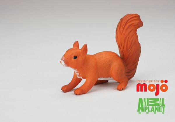 【MOJO FUN 動物模型】松鼠(跑姿)