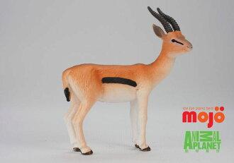 【MOJO FUN 動物模型】湯式瞪羚