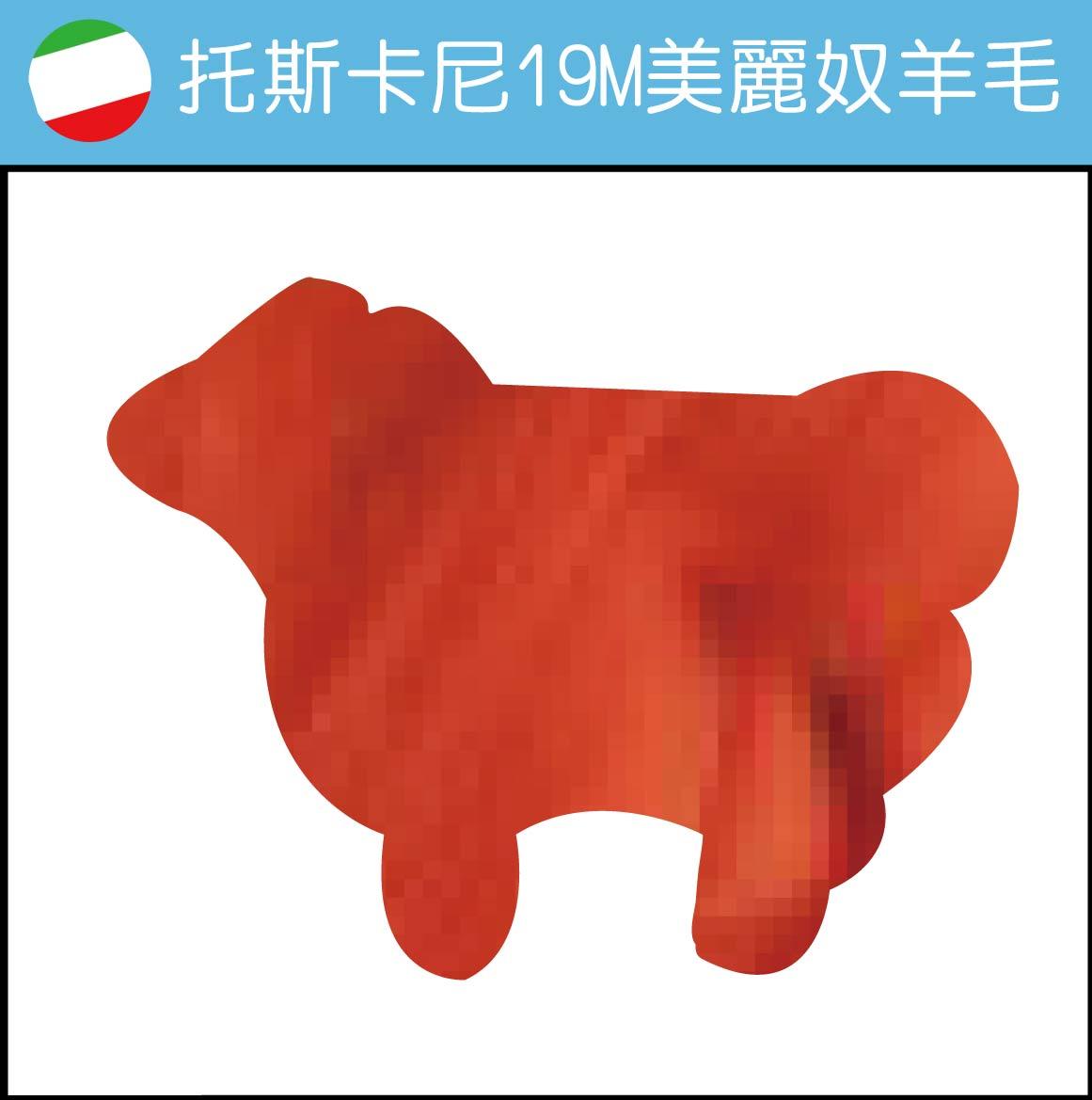 義大利托斯卡尼-19M美麗奴羊毛 DM211澄
