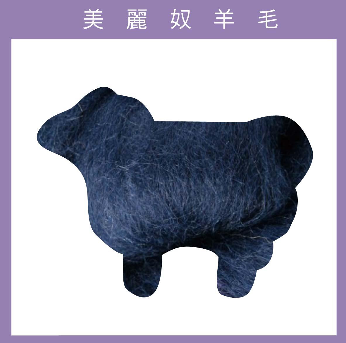 紐西蘭ASHFORD~美麗奴羊毛 M08靛藍色