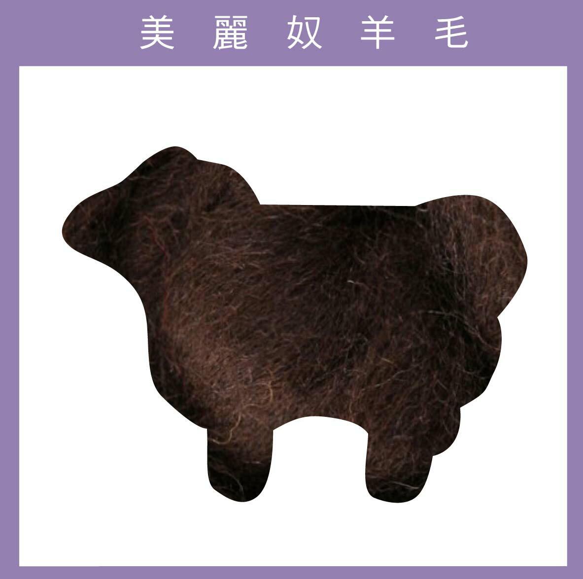 紐西蘭ASHFORD~美麗奴羊毛 M13巧克力色