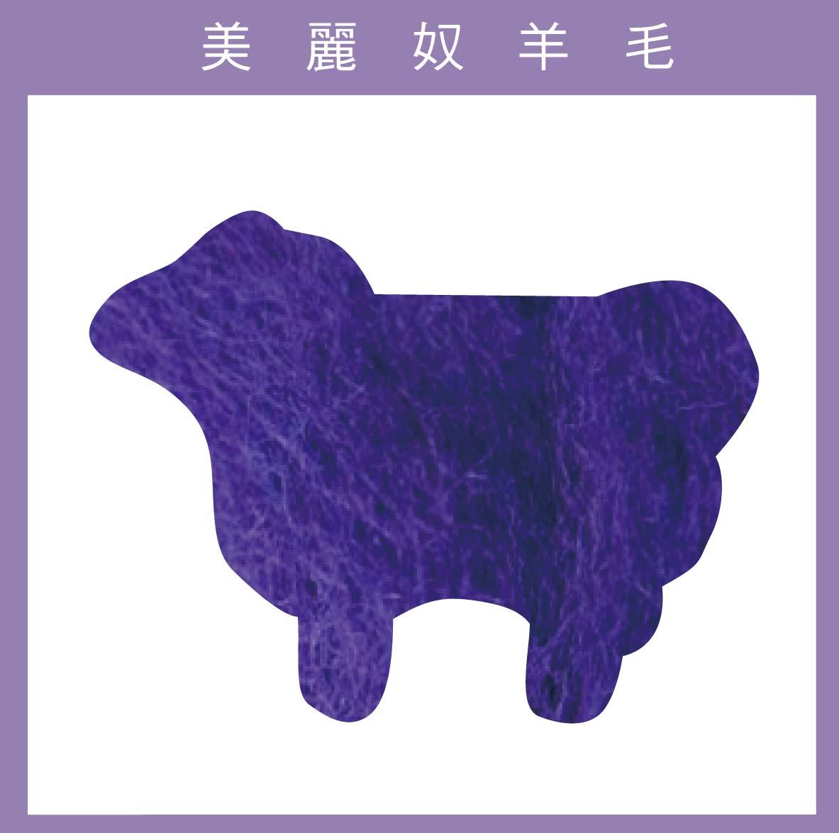 紐西蘭ASHFORD~美麗奴羊毛 M31深紫色