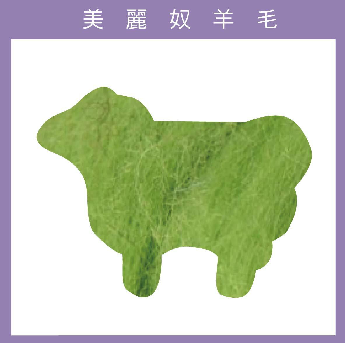 紐西蘭ASHFORD-美麗奴羊毛 M33草綠色