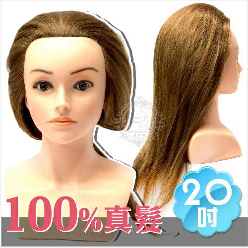 ~100%真髮~ 製七股神奇F2 20吋 半身頭~ 棕色髮   44685 剪髮盤髮練習