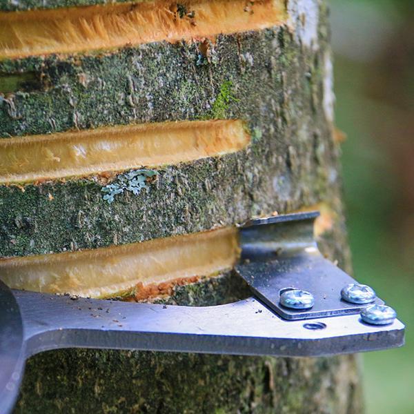 樹皮環剝器 環剝器棗樹蘋果樹剝皮刀割樹皮果樹環割刀環剝鉗工具可調節