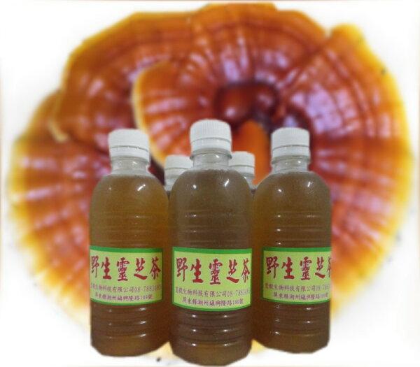 純野生靈芝子實體養生茶(每瓶300cc)