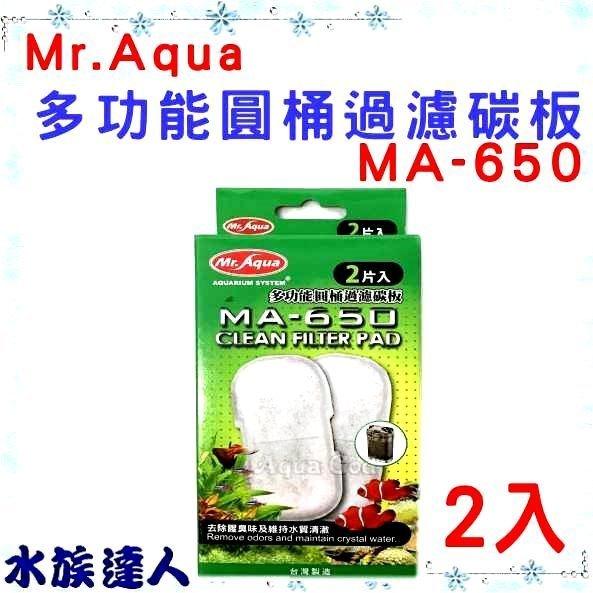 推薦【水族達人】【替換碳板】水族先生Mr.Aqua《MA-650 圓桶過濾器 專用 過濾碳板 2入 G-MR-101》
