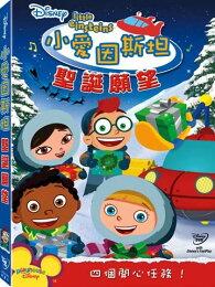小愛因斯坦:聖誕願望-DVD 普通版