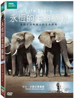 永恆的生命脈動-DVD