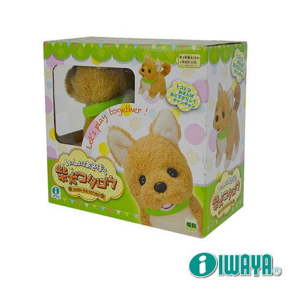 IWAYA 大甜甜-柴犬~日本暢銷電子寵物★愛兒麗婦幼用品★