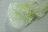 小泡蛋網帶 22mm 3碼 (3色) 1