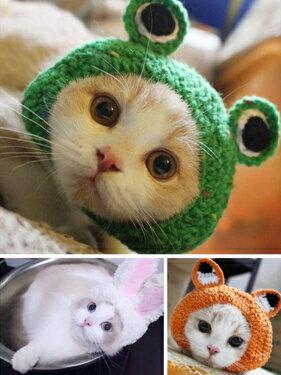 寵物假髮 寵物貓咪卡通耳朵小帽子女秋冬可愛款小奶貓針織毛線頭飾寵物用品   全館八五折