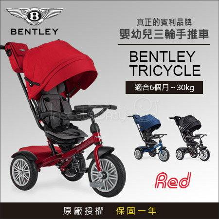 ✿蟲寶寶✿【英國Bentley】原廠授權Bentley賓利時尚超豪華6合1嬰幼兒手推車學步車三輪車紅色