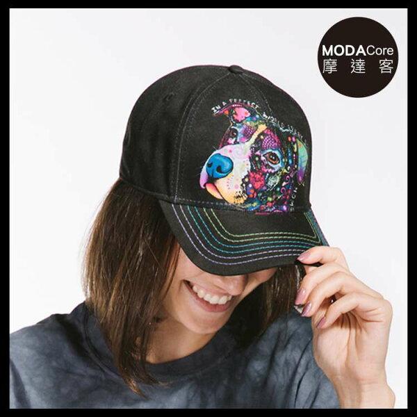 【摩達客】(預購)美國進口TheMountain藝術家DR系列彩繪完美米克斯棒球帽6-Panel六分割帽