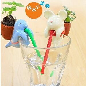 美麗大街【BF505E22E864】正品創意迷你動物嘴巴吸水萌寵小盆栽小植栽草娃娃辦公桌面禮品