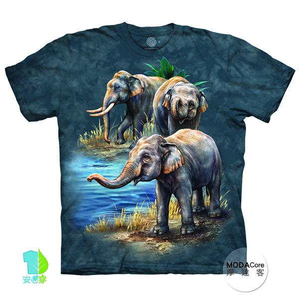 【摩達客】(預購)美國進口TheMountain亞洲象群純棉環保藝術中性短袖T恤