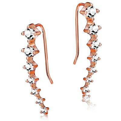玫瑰金耳環925純銀鑲鑽耳飾~ 氣質單排 七夕情人節 女飾品2色73gs209~ ~~米蘭