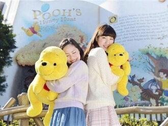 日本直送 迪士尼 Disney 小熊維尼 Winnie Pooh 軟綿抱枕 中/大 型款造型 玩偶