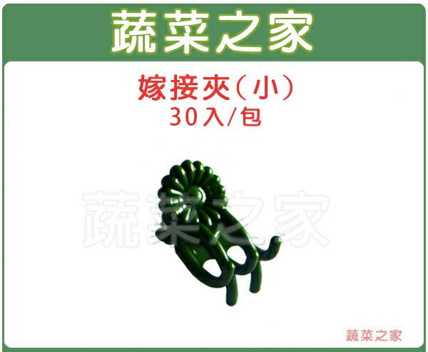 【蔬菜之家009-C12-GR1】嫁接夾(蘭花夾.固定夾)-(小)30入/組 綠色