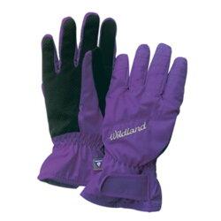 《台南悠活運動家》WILDLAND W2003-53 女PR棉防水防風觸控手套 紫色