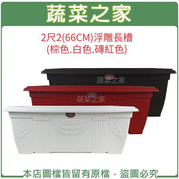 蔬菜之家:【蔬菜之家005-D127】2尺2(66CM)浮雕長槽(棕色白色磚紅色共三色可選)
