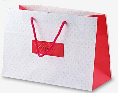 【零售量】星之彩手提袋30*13*20 / 50個