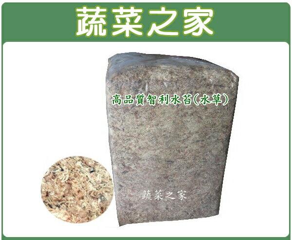 【蔬菜之家001-A97】智利水苔(水草)5公斤±10%裝