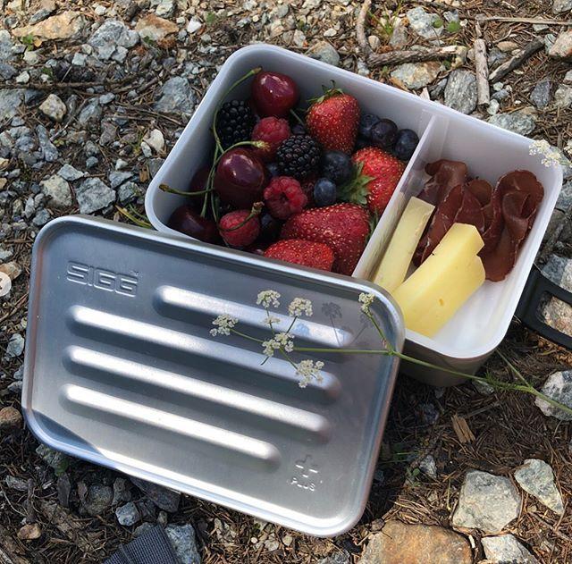 SIGG Metal Box Plus L 午餐盒 / 便當盒 -大 7