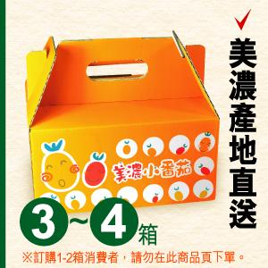 美濃專賣店:美濃橙蜜香番茄(3-4箱運費120元訂購區,每箱450元)