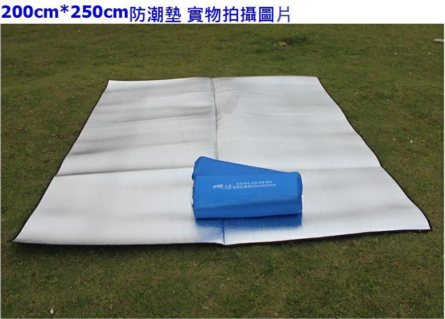 ANA 野餐 防潮地墊200*250cm 附收納袋