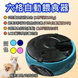 六格 LED寵物自動餵食器 自動 定時 必備