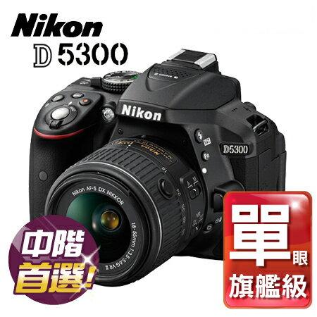 """Nikon尼康 D5300 +18-55 KIT 公司貨""""正經800"""""""