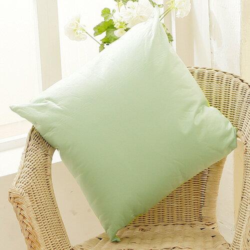 床之戀 雙面防潑水舒適方型抱枕48x48cm-嫩芽綠(MG0145G)