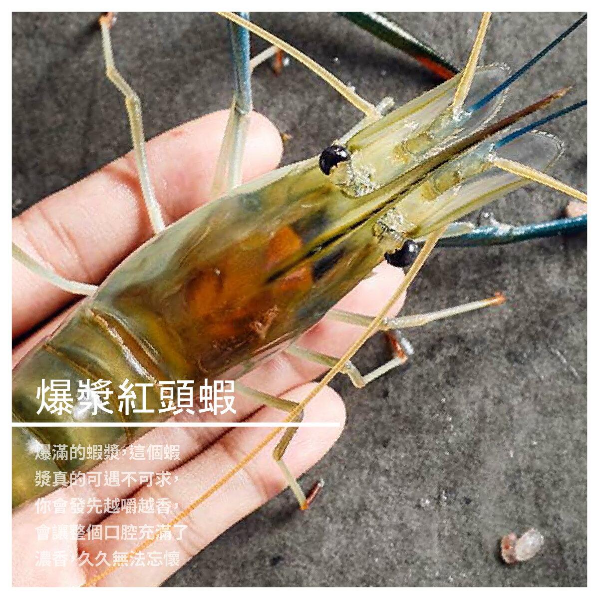 【黑豬泰國蝦宅配】爆漿紅頭蝦 600g