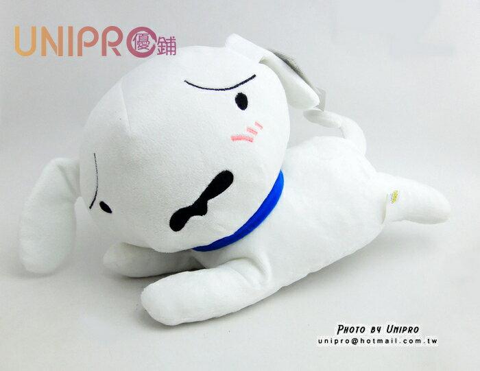 【UNIPRO】蠟筆小新 小白 側趴 側姿 皺眉 害羞 12吋 絨毛娃娃 玩偶