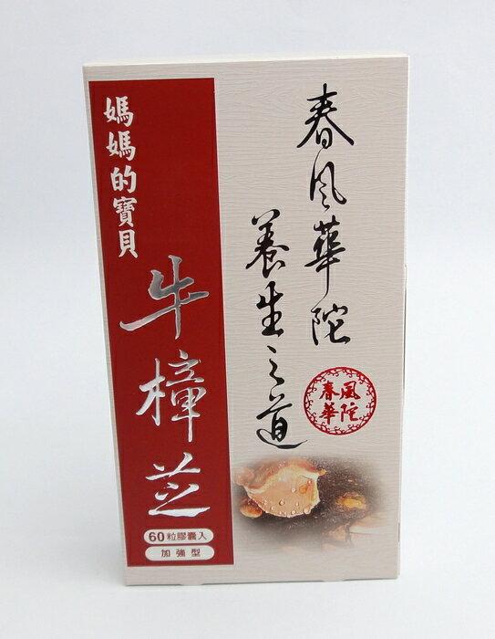 春風華陀 養生之道 媽媽的寶貝 牛樟芝膠囊食品 補給品 60粒膠囊入 加強型
