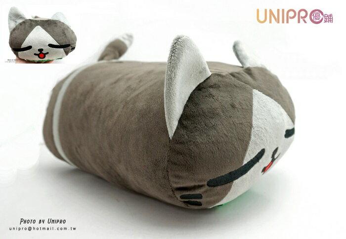 【UNIPRO】AIROU 艾路貓 梅拉路 圓柱型抱枕 瞇眼貓 睡覺貓咪 長枕