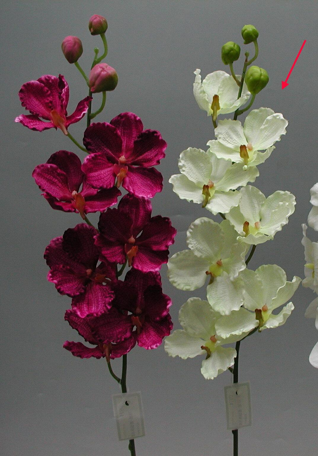 ★超低價★皺紋蝴蝶蘭 / 人造花 空間 景觀 佈置 造景