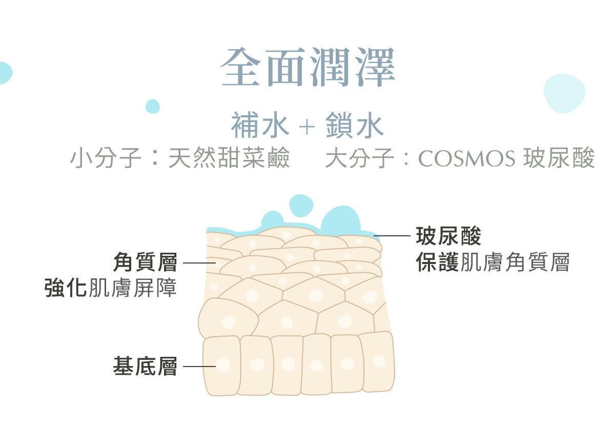 MIT👍滿額贈♥️【Inna Organic 童顏有機】綠茶玫瑰舒膚純露面膜 (1片) 5