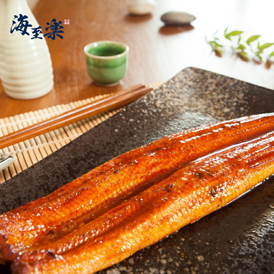 海至樂【日式蒲燒鰻】240g 1尾入★頂級輸出「日本規格」★【產地】至餐桌品質保證