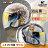 加贈手套 M2R安全帽 J-5 #6 柯基 特仕版 限定版 消光黑白 雙色 多層膜鏡片 內鏡 3 / 4罩 半罩帽 耀瑪騎士 0