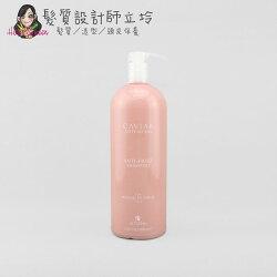 立坽『洗髮精』歐娜國際公司貨 Alterna CAVIAR 魚子醬 抗毛燥洗髮露1000ml HH02