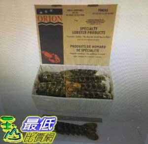 [COSCO代購 如果沒搶到鄭重道歉] 冷凍生龍蝦尾14-16OZ 2.27公斤 W144208