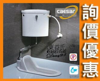 【東益氏】CAESAR凱撒蹲式馬桶 手控無段式省水蹲便 CT1250-65.5cm 另售單體馬桶 小便斗