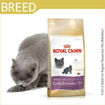 *Mi Gu*法國皇家Royal《BS34》2kg英國短毛貓