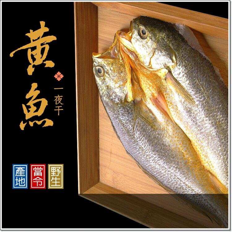 黃魚一夜干 梓官區漁會背書 肉質鮮嫩 純海水箱網養殖,嚴格控管黃金一小時保鮮時段 免調味!!